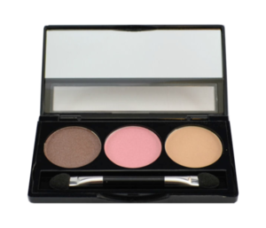 Manhattan Blogger's Choice Trio Eyeshadow # 3 Downtown To Earth